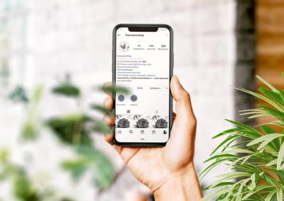 Stratégie & Formation Instagram